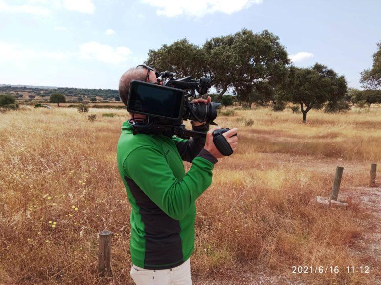 Video AFN